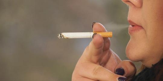 Weniger rauchen – mehr Geld für höherwertiges Essen