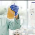 Blutplasma von Genesenen kann COVID-19 Erkrankten helfen – DRK Aufruf zur Plasmaspende